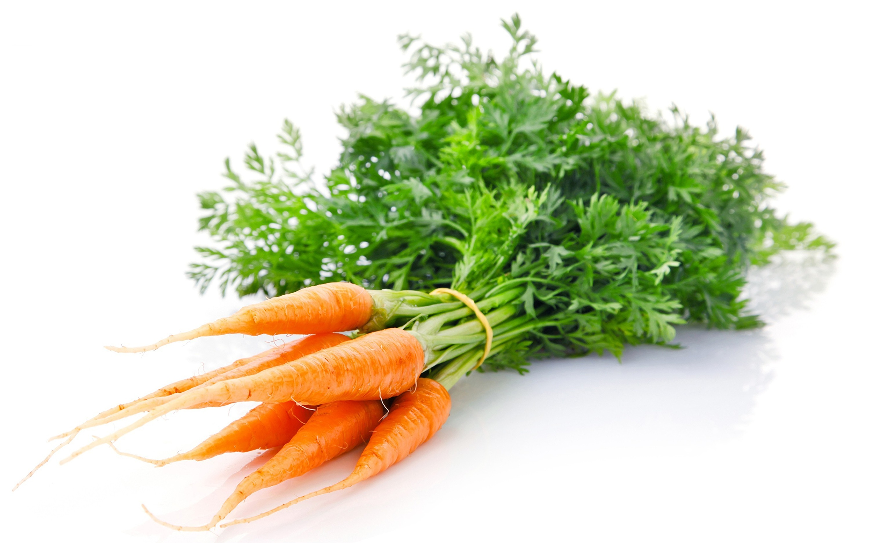Carrots_White_background_502329_2880x1800.jpg